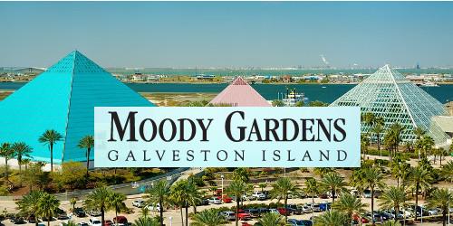 150th Anniversary Scottish Rite Freemasonry Valley Of Galveston Orient Of Texas